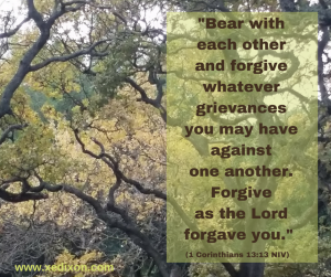 Forgive as the Lord forgave you. (1 Cor 13-13) - Blog - The Apology