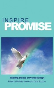 Inspire Promise Book Cover 2014