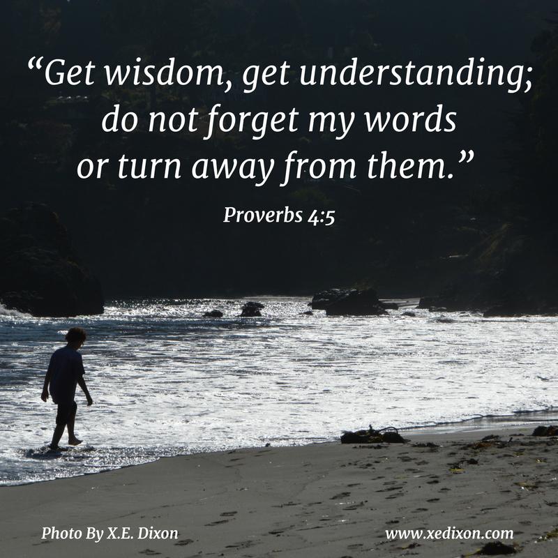 MEME - Proverbs 4 v 5