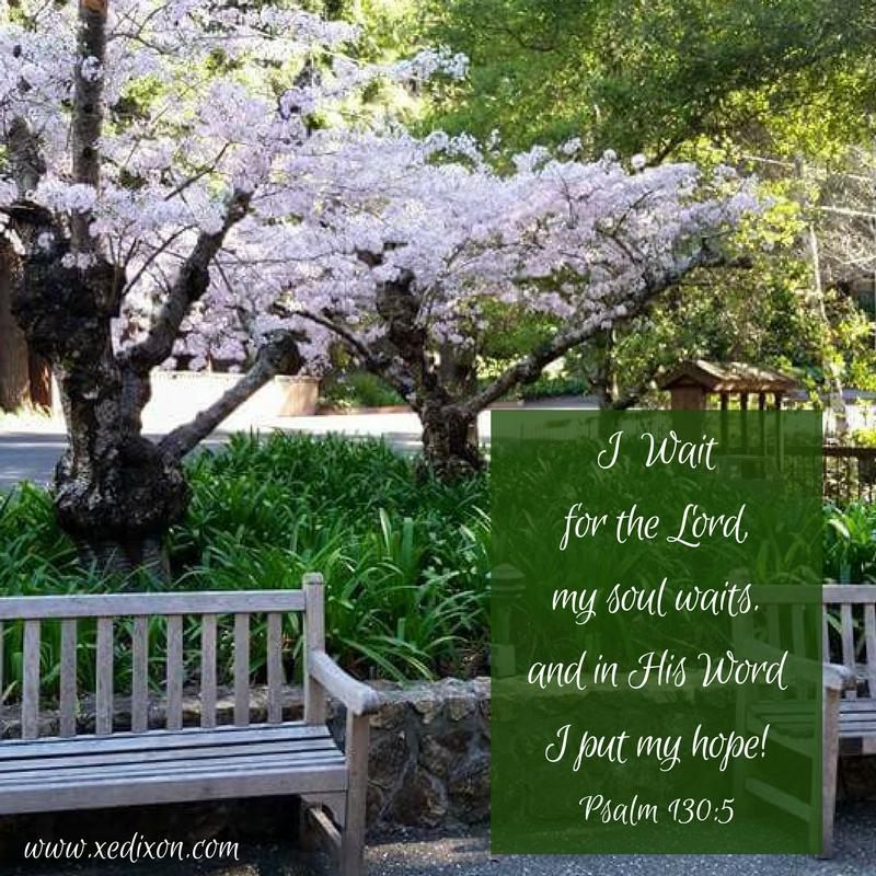 MEME - Psalm 130 v 5