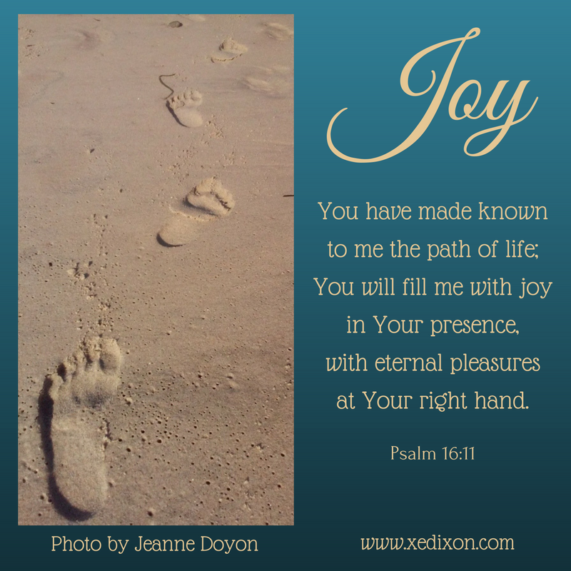 meme-psalm-16-v-11-photo-by-jeanne-doyon