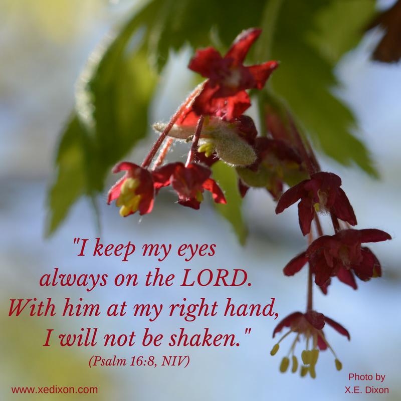 MEME - Psalm 16 v 8 NIV