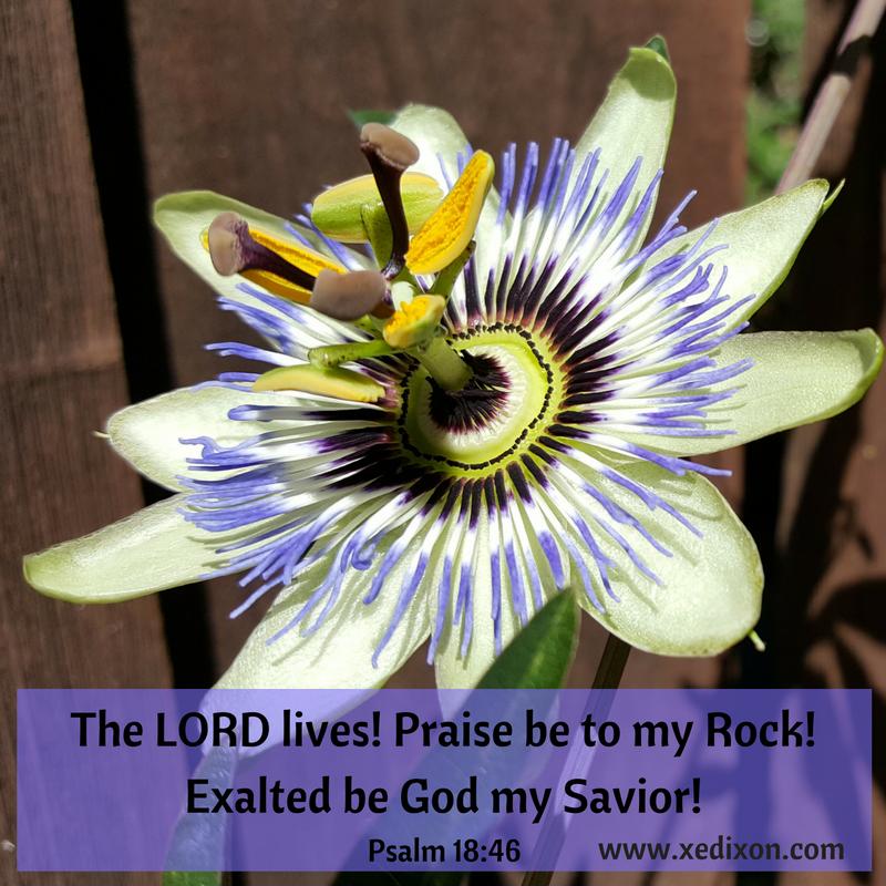 MEME - Psalm 18 v. 46