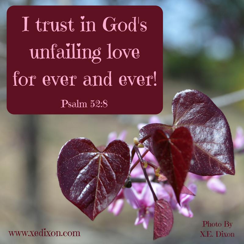 MEME - Psalm 52 v 8