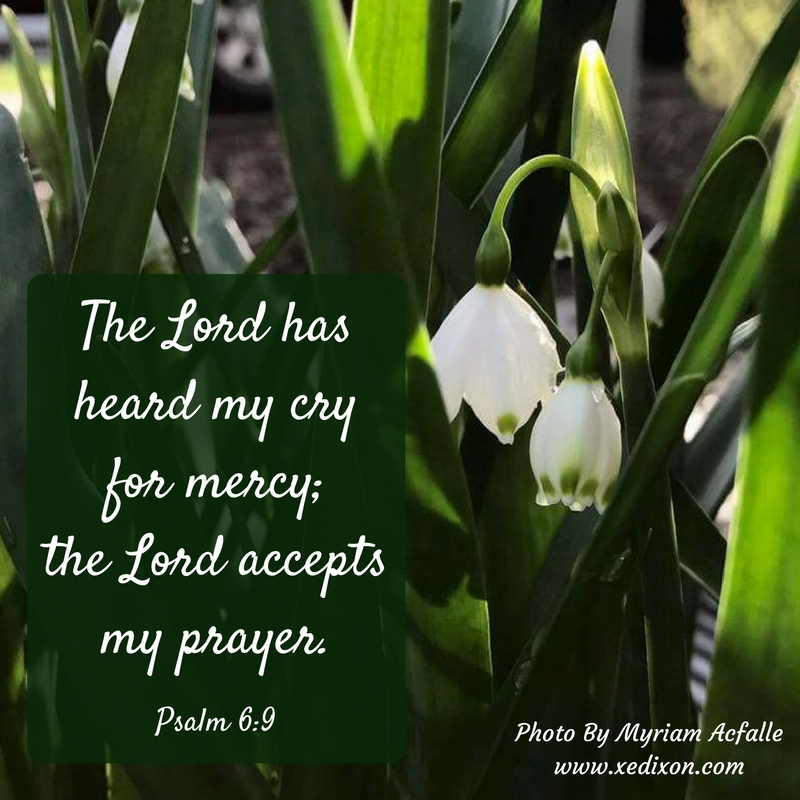 MEME - Psalm 6 v. 9