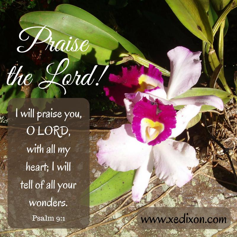 MEME - Psalm 9 v. 1