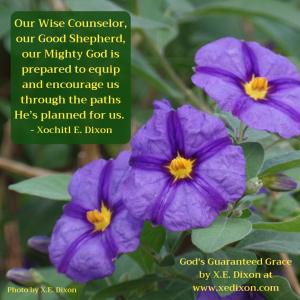 MEME - Quote - God's Guaranteed Grace - Dec 4, 2018