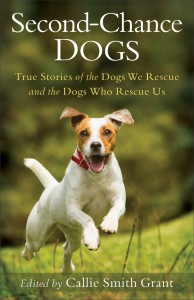 Second Chance Dogs ORIGINAL cover